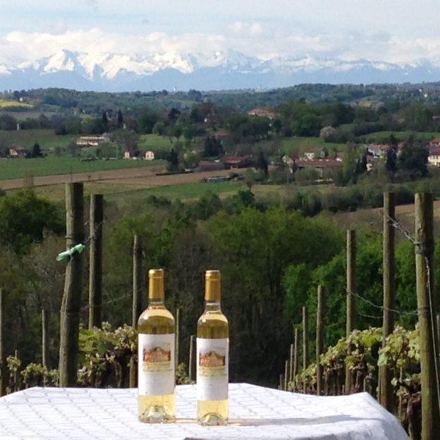 chateau de perron vin blanc pacherenc